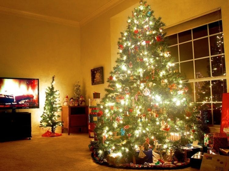 Cascade ECO Christmas Tree Review  Giveaway Closed