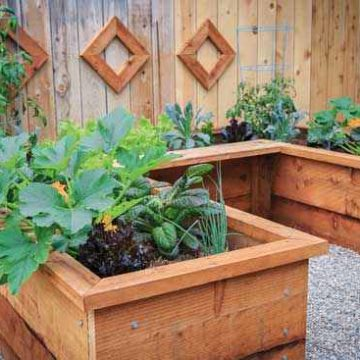How To Build A Raised Garden Box