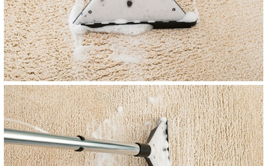 How to Clean Carpets on a Budget?
