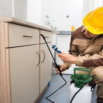 Best Tips For Selecting A Pest Control Service